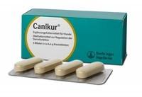 Boehringer Ingelheim Canikur® Kautabletten, 3 x 4 x 4,4 g