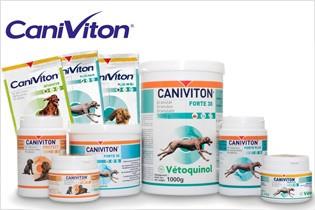 blog_caniviton_gruppe